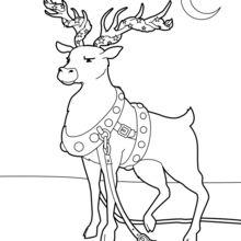 Ren für Weihnachten dekoriert