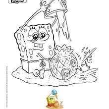 Sponge Bob Färbung zum Strand