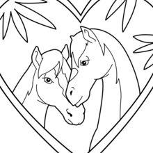 Paar von Pferden