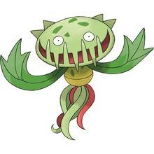 Tohaido Pokemon Zum Ausmalen De Hellokids Com