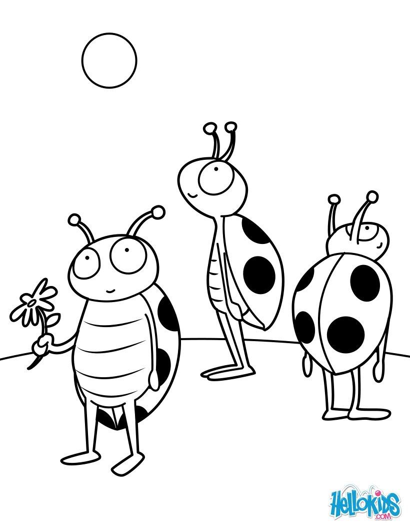 Insekten Zum Ausmalen Ausmalbilder Ausmalbilder Ausdrucken De