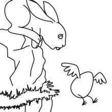 Osterhase Fliegen Ei