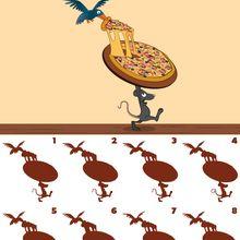 Die Pizz