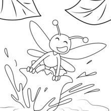 Biene auf Blume von Maiglöckchen