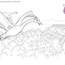 Ballet Swan Färbung