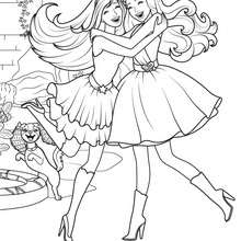 Die Prinzessin und der Popstar Druck