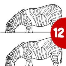 ZEBRA finde die 12 Unterschiede