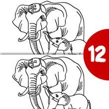 ELEFANT finde die 12 Unterschiede