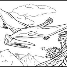 Fliegendes Reptil zum Ausmalen