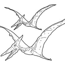 Pterosaur zum Ausmalen