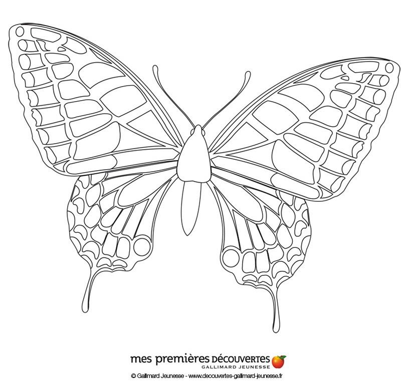 Färben eines Schmetterlings