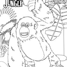Harry gorilla