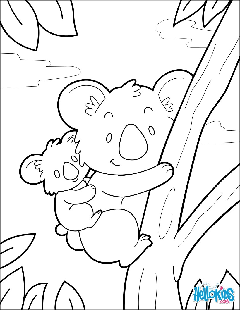Koala Zum Ausmalen De Hellokids Com
