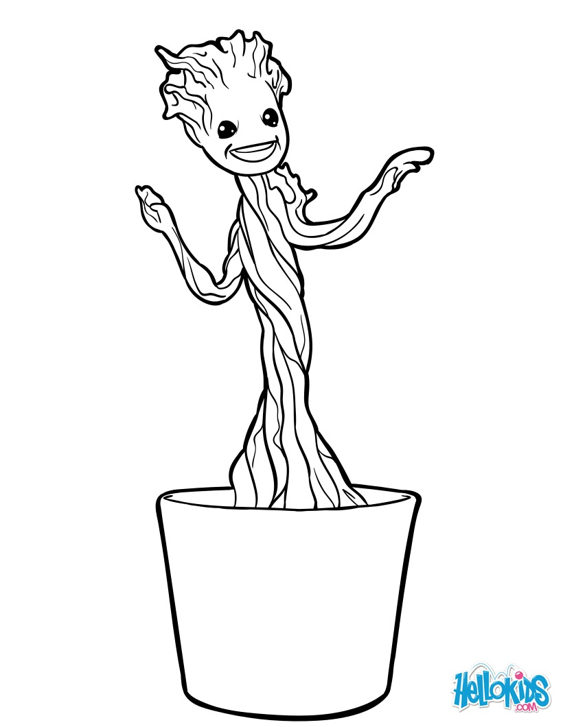 Klein Groot