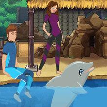 Die Delphin-Show 3