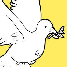 Der Flug der Taube des Friedens